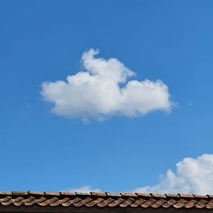 Met je hoofd in de wolken